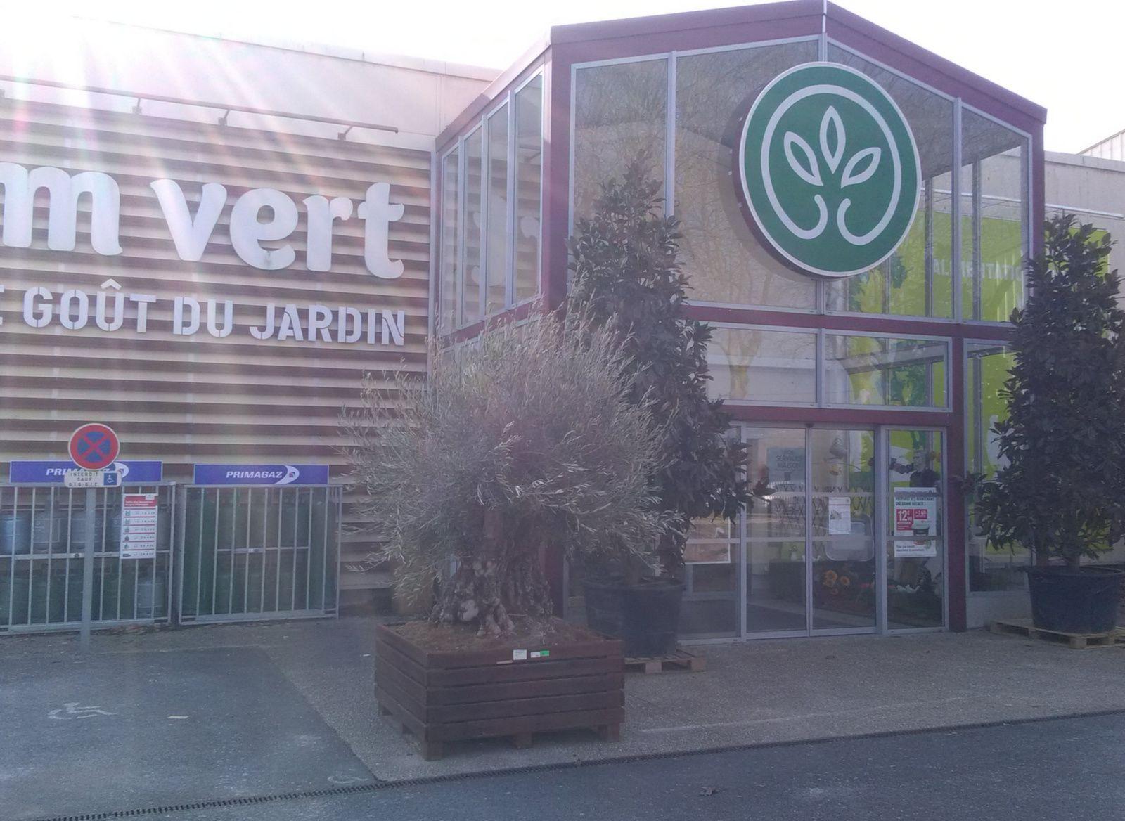 GAMM VERT EPERNAY - EPERNAY - Marne