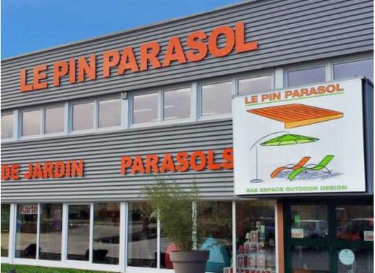 LE PIN PARASOL