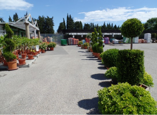 Jardinerie Ediosmo